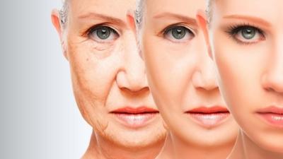 mejor crema antiarrugas cicatricure